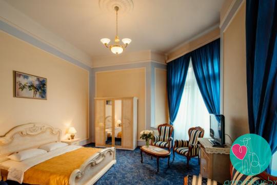 отель Жорж номер Стандарт