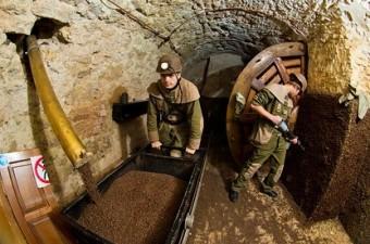 Экскурсия в шахту кофе